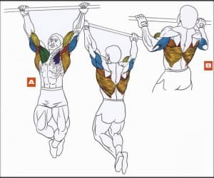 Подтягивание широким хватом к груди