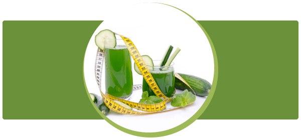 Огуречная диета: чистим организм, используя дары природы