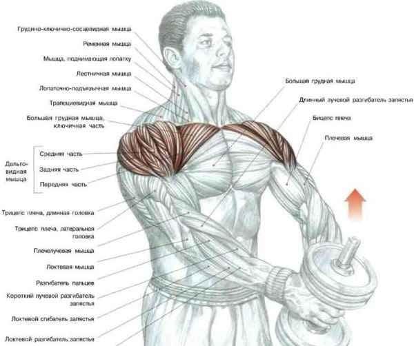 Поставьте ноги на ширине плеч.