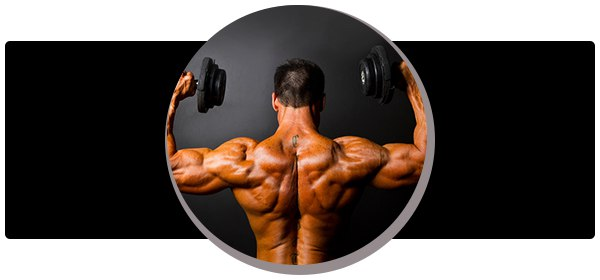 Данная статья поможет вам узнать о том, как дома развить широчайшие мышцы спины