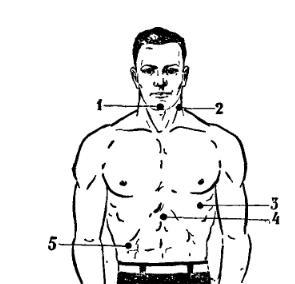 1 - нижняя челюсть, 2 - боковая сторона шеи (область сонной артерии), 3 - сердечная мышца, 4 - солнечное сплетение, 5 - печень