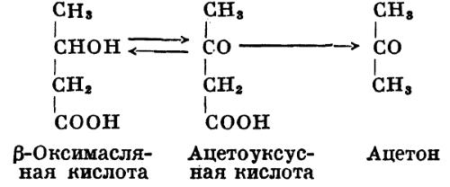 Виды кетоновых тел