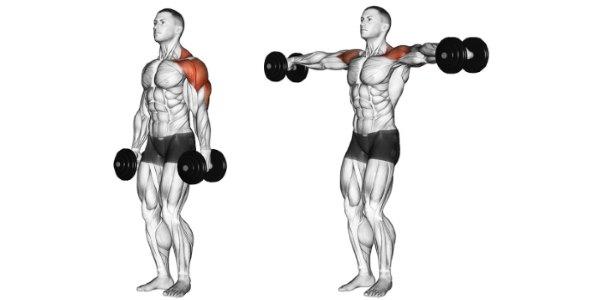 Выше уровня плеч гантели поднимать нет смысла, так как нагрузка с дельт уходит на другие мышцы
