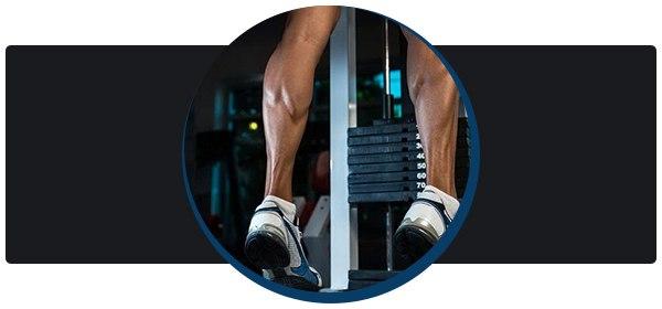 В данной статье описаныупражнения и подробные рекомендации по накачке икр как для начинающих, так и для продвинутых спортсменов