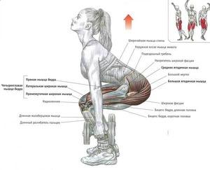 Обратите внимание на правильное положение спины