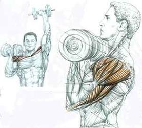 Выполняя данные упражнения попробуйте использовать атлетический пояс - он поможет снять нагрузку с поясницы и защитить позвоночник от травм