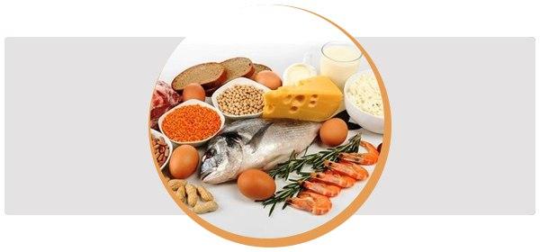 Какие продукты содержат белок в большом количестве