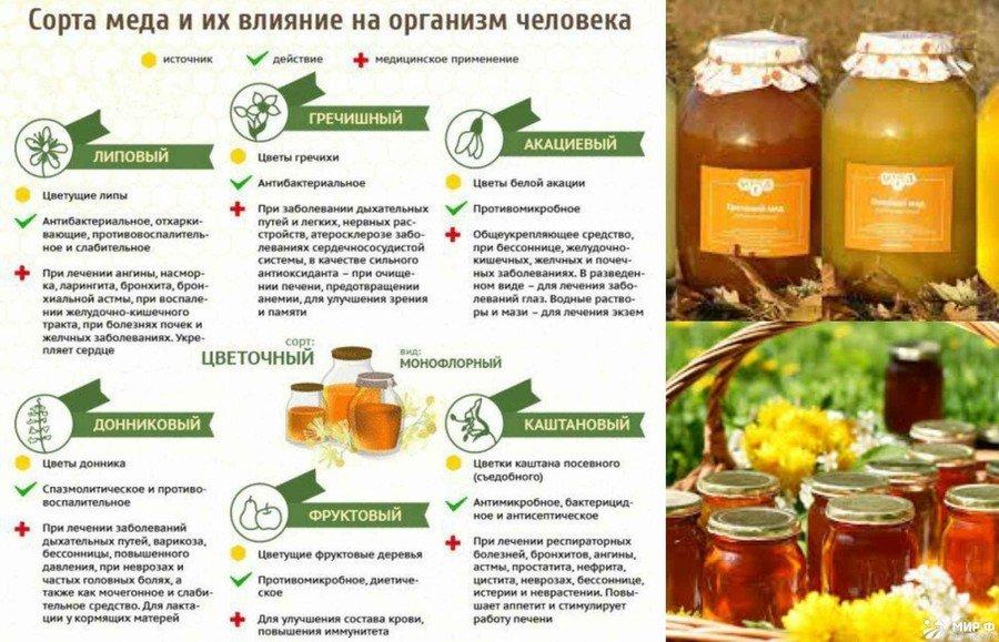 Мед для похудения свойства и противопоказания