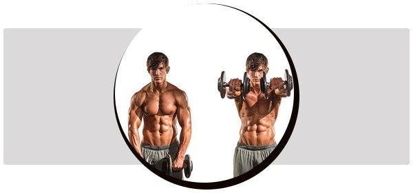 Подъем гантелей перед собой техника и вариации какие мышцы работают