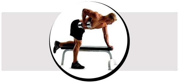 Как правильно делать тягу в наклоне и какие есть варианты техник? Какие мышцы работают?
